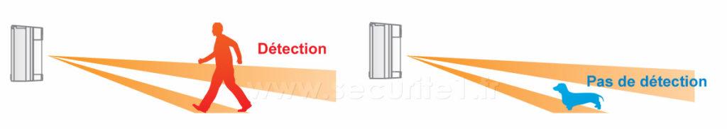 Alarme extérieure avec l'Optex VXS et une détection sur 2 niveaux
