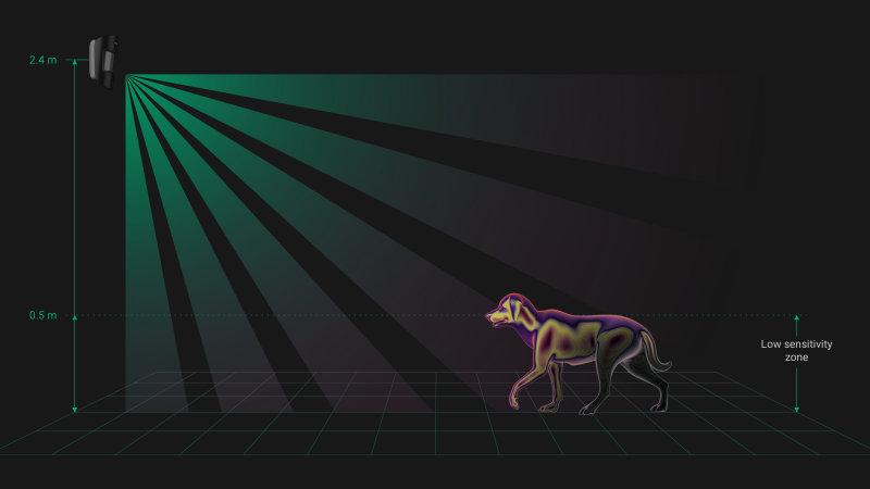 Détecteur de mouvement compatible animaux domestiques